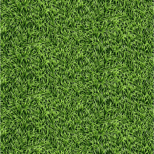Green Grass Fabric - 100% Cotton- Sold by the Half Yard