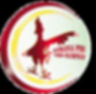nuevo logo transparente.png