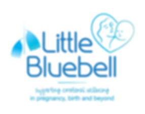 Little Bluebell Logo.jpg