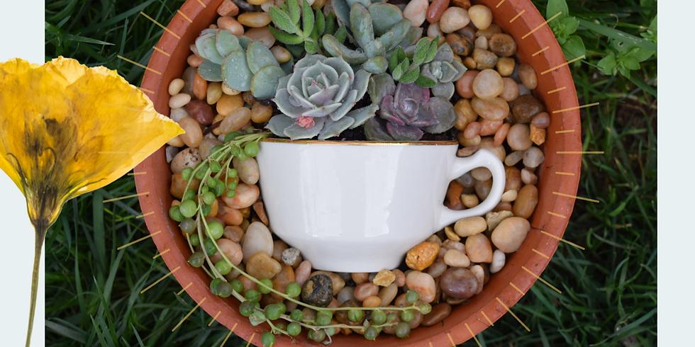 Succulent Teacup Planting Party