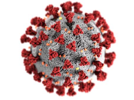 Coronavirus release - covid-19