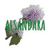 Verde y Rosa Flor Hojas Floral Logotipo.