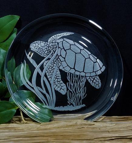 Loggerhead Turtle Underwater Scene