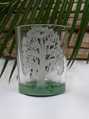 Majestic Oak Glass Votive C
