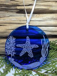 Starfish DB Scene Hanging