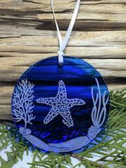 Starfish Scene