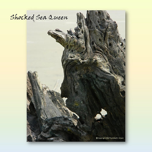 "Double Sided Print of ""Shocked Sea Queen"" & ""The Trio - Fish, Bird & Wolf"""