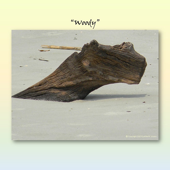 "Double Sided Print of ""Woody"" Sand Serpent & The Sand Serpent of Driftwood Beach"