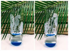 Seahorse Underwater Shot Glass