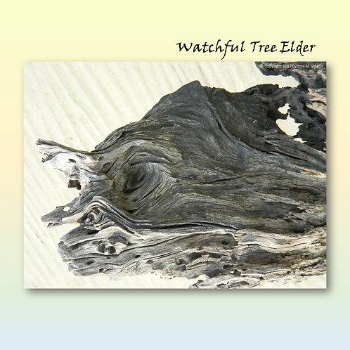 "Double Sided Print of ""Watchful Tree Elder"" & ""Hidden Demon"""