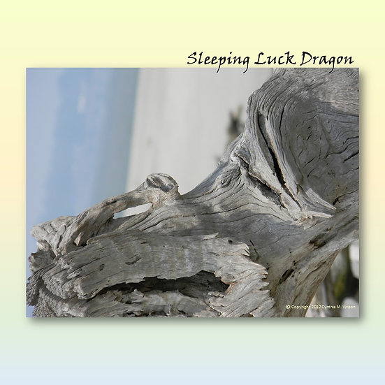 """Double Sided Print of """"Sleeping Luck Dragon"""" & """"Heart of Nature"""""""