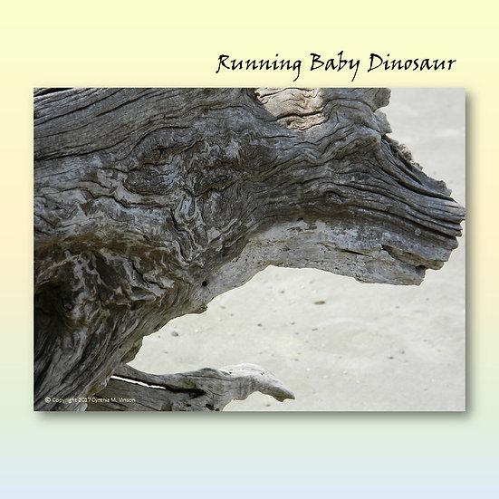 "Double Sided Print of ""Running Baby Dinosaur"" & ""Praying Rabbit"""