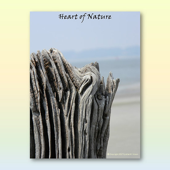 """Double Sided Print of """"Heart of Nature"""" & """"Sleeping Luck Dragon"""""""