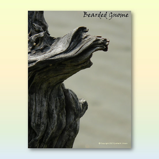 """""""Bearded Gnome"""" & """"Ancient Tortoise"""" Double Sided Print"""