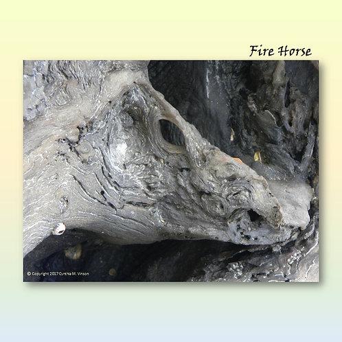 "Double Sided Print of ""Fire Horse"" & ""Secret Meeting of Beak & Bill"""