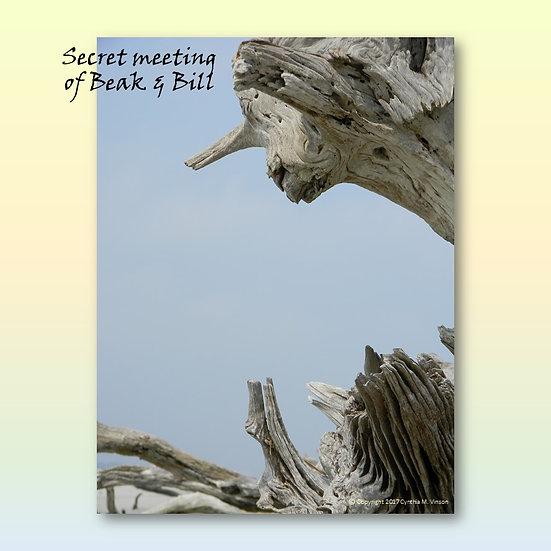 """Secret Meeting of Beak & Bill"" & ""Fire Horse"" Double Sided Print"
