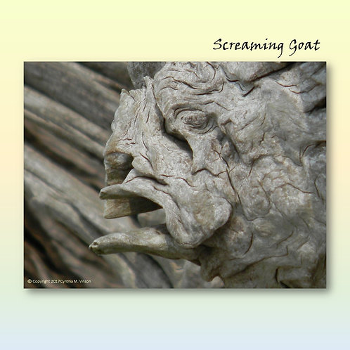 """Double Sided Print of """"Screaming Goat"""" & """"Dreaming Lion"""""""