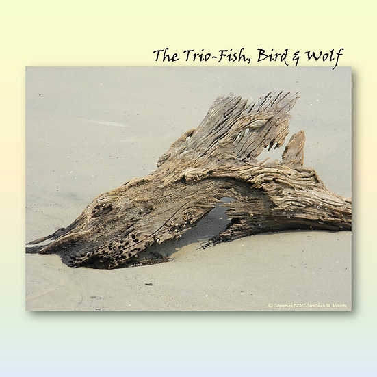 """Double Sided Print of """"The Trio - Fish, Bird & Wolf"""" & """"Shocked Sea Queen"""""""