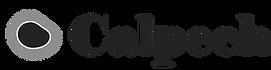 Calpech se dedica a la producción de las nanopartículas de hierro cerovalente encapsuladas en carbono (CE-nZVI) para soluciones ambientales: mejora de la producción del biogás y eliminación del ácido sulfhídrico en los biodigestores, elminación de metales pesados en aguas y suelos contaminados, etc. También asesoramos en el montaje y operación de las plantas de carbonización hidrotermal de los residuos agroindustriales, higiénicos, lodos y similares para su valorización energética.