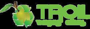 logotipo-troilx2.png