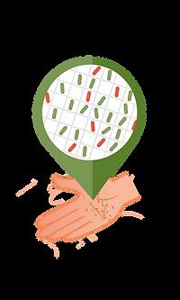 Normaal microbioom.png