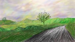 Vista da estrada de Maquiné/ RS