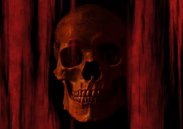 skull-and-crossbones-794825_1280.jpg