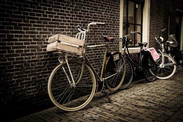 Alkmaar Bikes.jpg