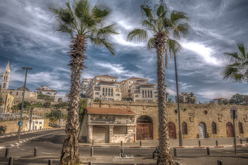 Jaffa House Tree HDR.jpg