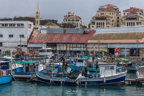 Jaffa Marina winter.jpg