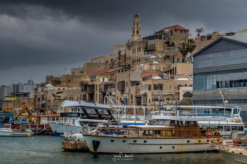Jaffa Marina winter-2.jpg