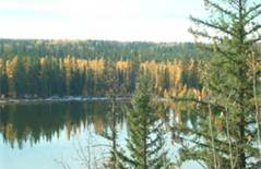 Fall at Phyllis Lake