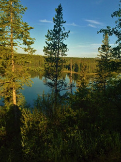 Phyllis Lake.JPG