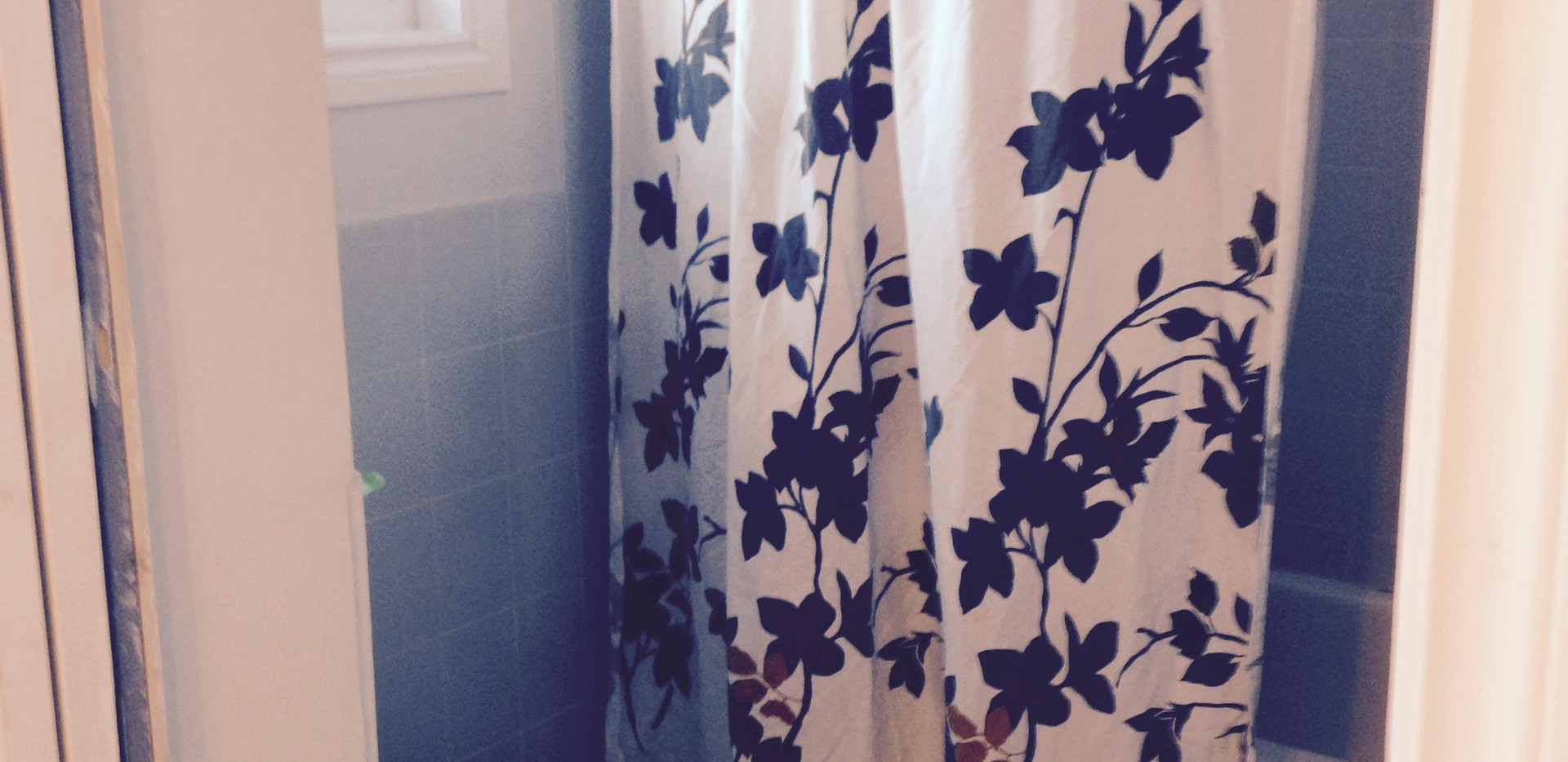 1 BDRM Suite Private Bathroom.jpg