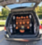 trunk 11.PNG