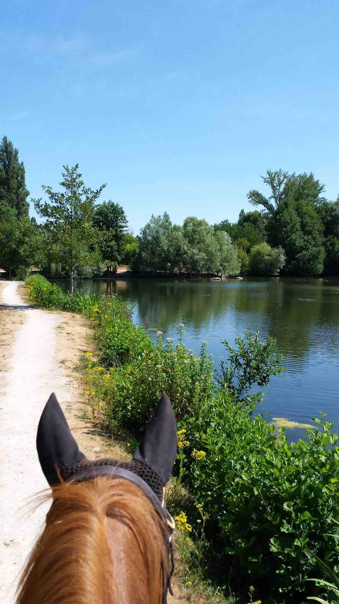 pâtis promenade étang