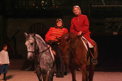poney, cheval, spectacle, plaisir, meaux
