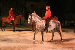 cheval, poney, histoire, costume