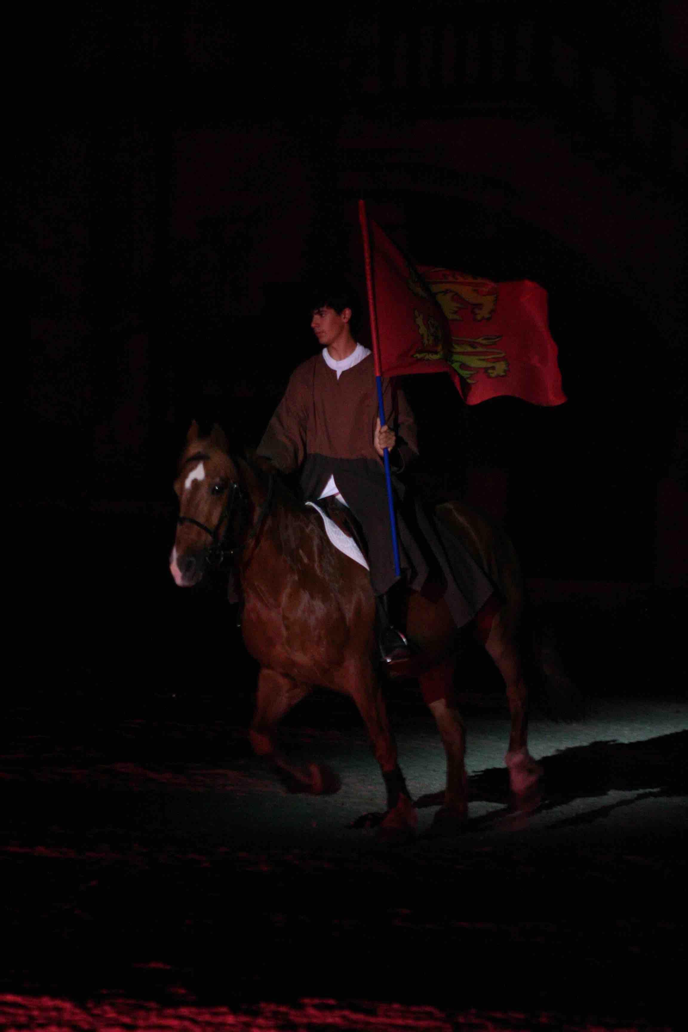 fete, nuit, cheval, histoire, meaux, cathedrale
