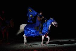 cheval, meaux, bleu, equitation, chevalerie