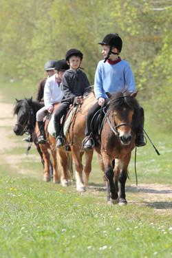 randonnée,_reprise,_poney,_promenade,_CHmeaux,_77,_tourisme_équestre_