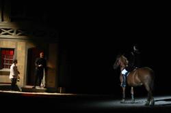 Spectacle historique, meaux, 77, cheval