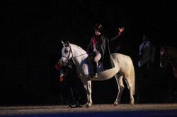 napoleon, histoire, meaux, 77, fete, cheval