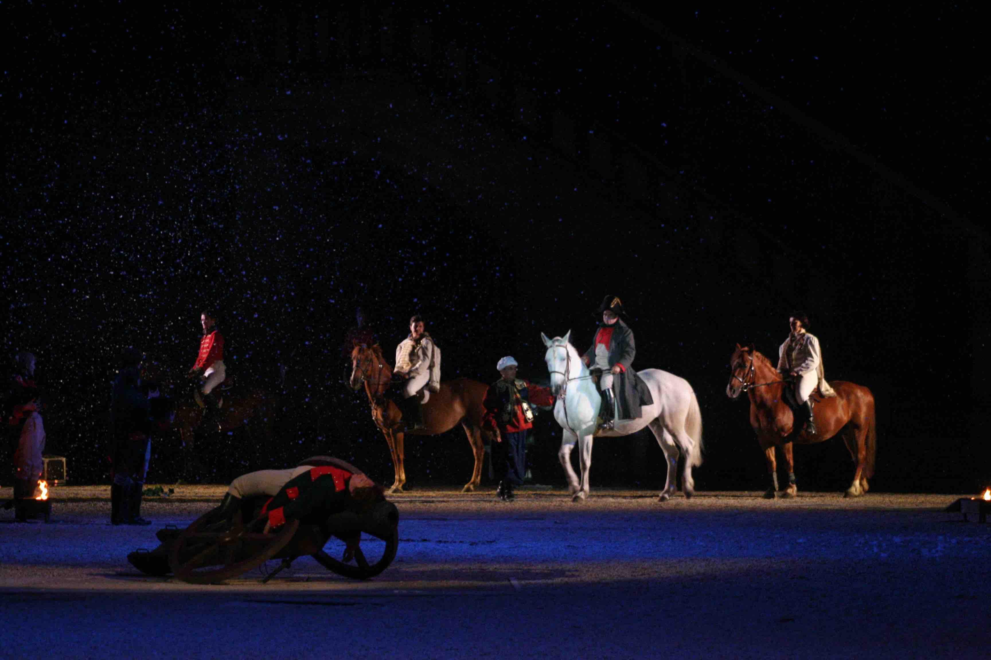 napoleon, histoire, spectacle, cheval, poney, CHM