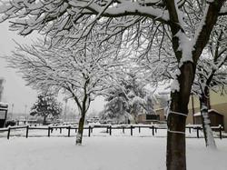 centre equestre, neige, Seine et marne, loisir