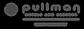 Pullman Danang Logo