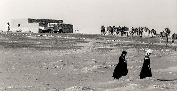Sahara Occidental