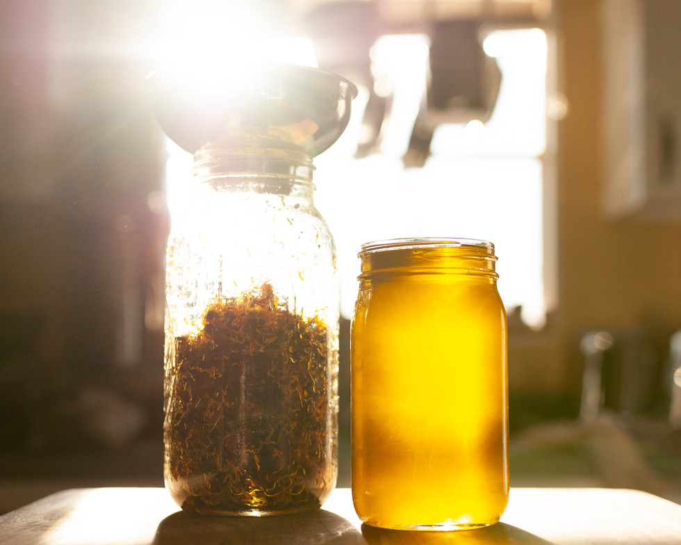 straining calendula oil