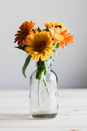 calendula bouquet