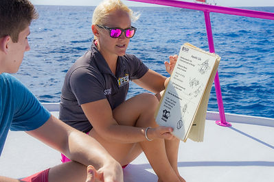A Divtech instructor teaching a Discover Scuba Session in Grand Cayman